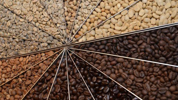 Cafeaua, o băutură pentru toate simțurile